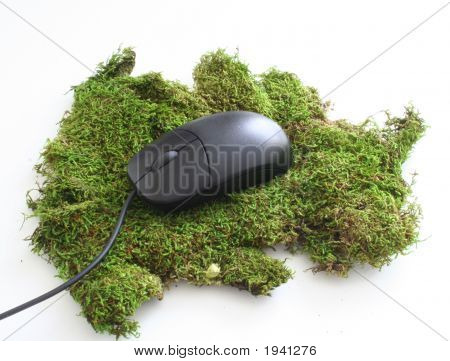 Mossy Mouse Pad 2