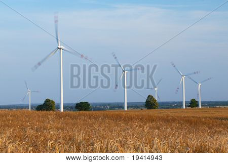 Power generating wind turbines on cultivated wheat field, blurred to show quick movement, Poland