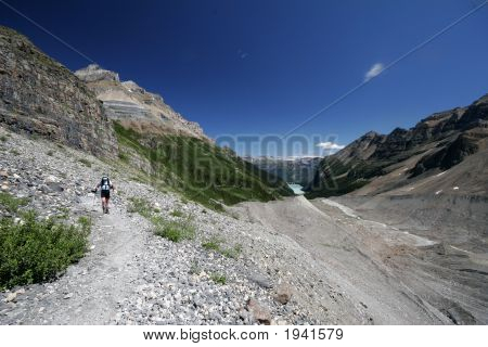 Woman Hiker On The Trail