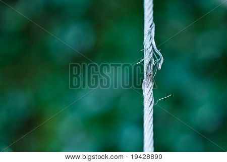 damaged steel cable. shallow depth of view.