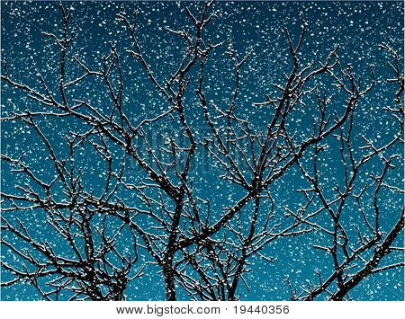 tree snow covered and snow falling vector