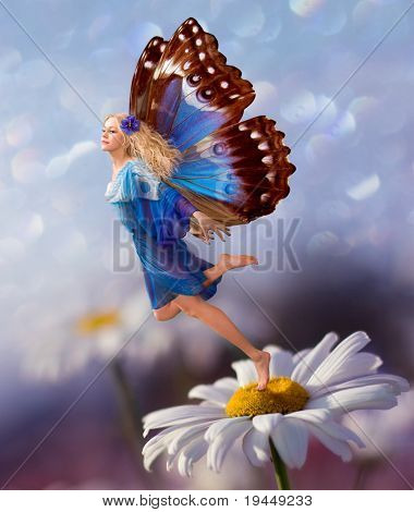 Female Elf fly with chamomile flower