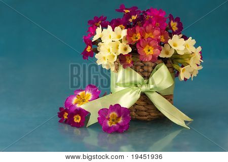 bouquet of flowers in the spring primroses in basket