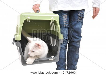 Van cat in pet carrier carried by little girl.