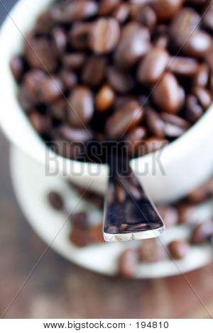 Coffee Cup 6