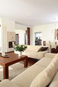 picture of scant  - Modern living room - JPG