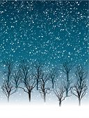 snow falling on naked tree forest vector