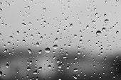 picture of rain-drop  - Rain drops texture - JPG