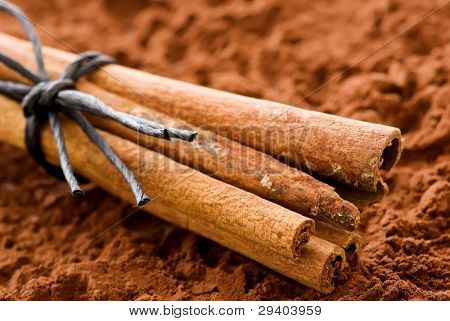 Cinnamon Sticks with Cocoa