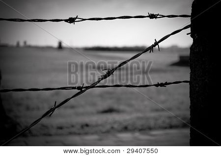 Barbed Wire Fence In Concentration Camp