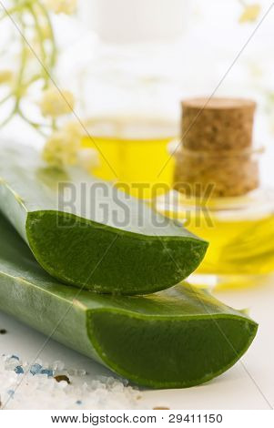 Aloe and Skin Care