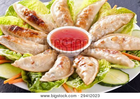Gyoza served on the plate with salad