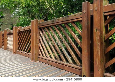 Wooden fence in garden with tree