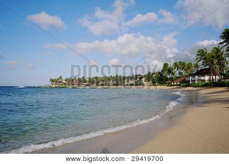 Sunny Curved Beach