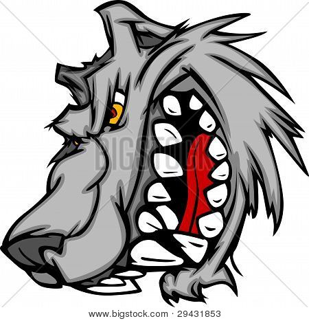 Lobo mascote Vector Cartoon com rosnando Face