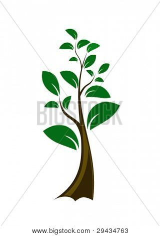 Small single vector green tree