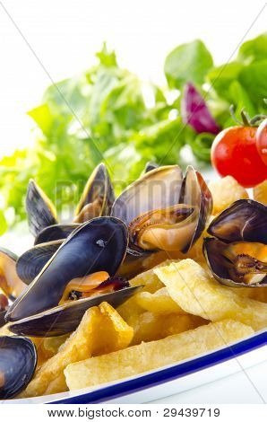 French Fries With Mussels, A Belgian Specialty