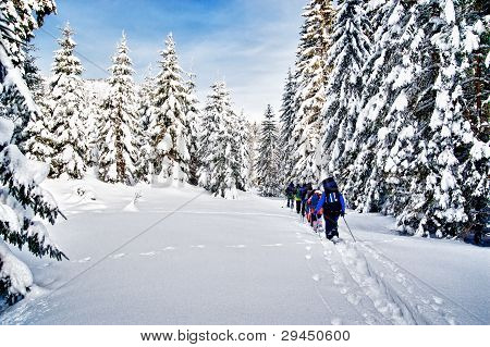 Group of snowshoe hiker