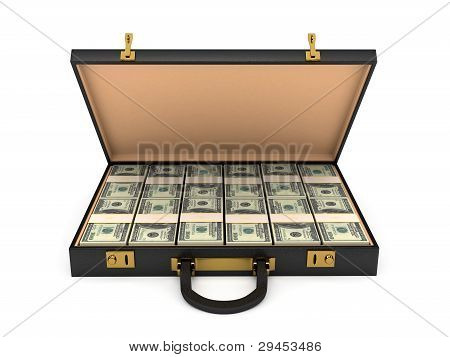 3d open case with money