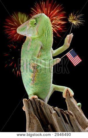 Chameleon Fireworks