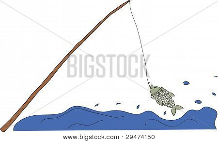Fish Which Was Caught On A Fishing-rod