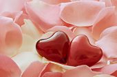 Hearts embedded in Rose Petals