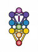 Kabbalah Tree Of Life Alchemy Jewish Hebrew Numerology Spiritual Chakras Illustration poster