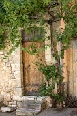 Old Tenement House Overgrown With Ivy In Sault, Vaucluse Department In Provence Region, France poster
