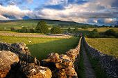 stock photo of green wall  - Footpath in Wharfedale Yorkshire Dales National Park United Kingdom - JPG