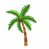 Vector Illustration With Palm Tree Isolated On White Background. Cartoon Palms On Small Piece Of Lan poster