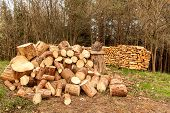 Pile Of Firewood. Preparation Of Firewood For The Winter. Close Up Of Blocks Of Firewood With Log Ne poster