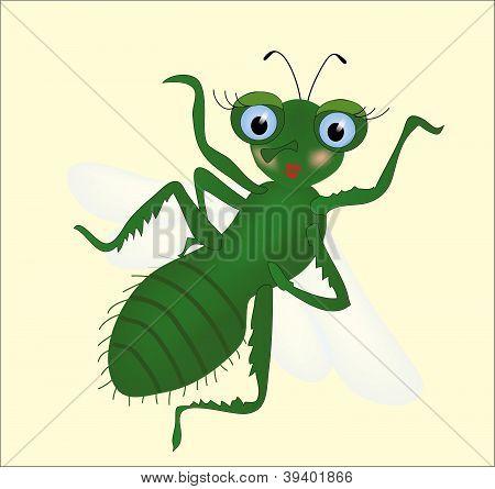 Vector housefly