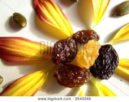 Raisin Flower