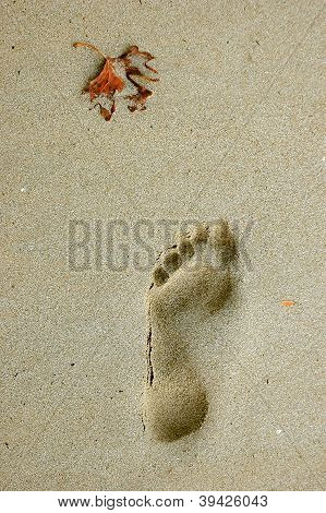 Foostep On The Beach