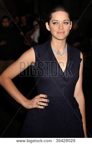 NEW YORK, NY - NOVEMBER 26: Actress Marion Cotillard attends the IFP's 22nd Annual Gotham Independent Film Awards at Cipriani Wall Street on November 26, 2012 in New York City.