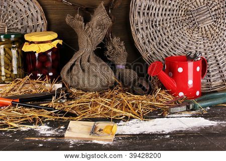 Mousetrap with a piece of cheese in barn on wooden background