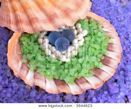Natural And Artificial Pearls In A Sea Shell