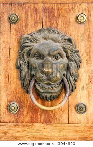 Lion Door Nob