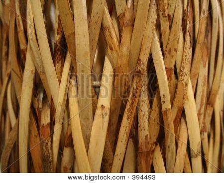 Split Bamboo Background