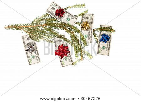 Dollars on fir tree