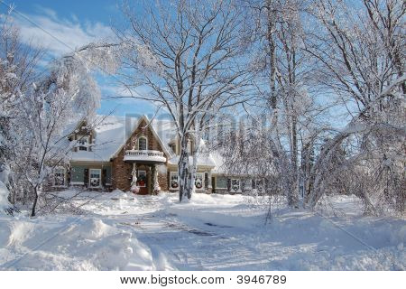 Cottage Winter Wonderland