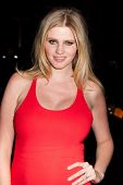 NEW YORK, NY - NOVEMBER 26: Actress Lara Stone attends the IFP's 22nd Annual Gotham Independent Film