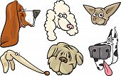 image of newfoundland puppy  - Cartoon Illustration of Different Happy Dogs Heads Collection Set - JPG