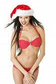 image of brest  - Sexy santa helper in bikini - JPG