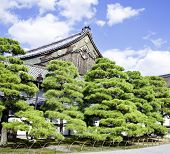 stock photo of shogun  - Nijo Castle was built in 1603 as the Kyoto residence of Tokugawa Ieyasu the first shogun of the Edo Period  - JPG