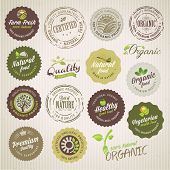 stock photo of spoon  - Set of vector organic food labels and elements - JPG