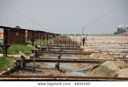 Workers In Salt Crystallization Field