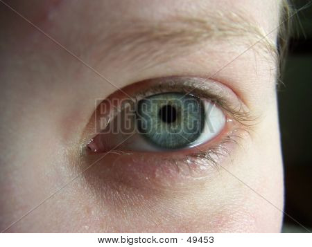 Closeup Of Single Hazel Eye