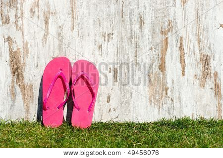 Slippers On The Meadow