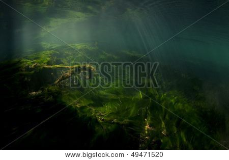 Scenic Underwater Background